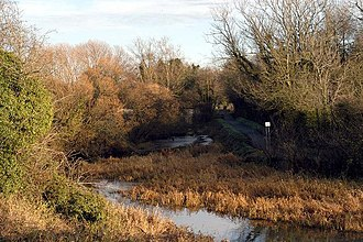 Lagan Canal - An overgrown section of the Lagan Canal near Dunmurry