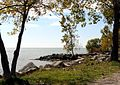 Lake Erie shoreline (4023782890).jpg