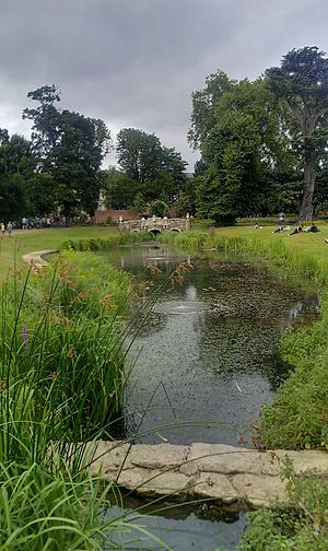 Walpole Park - Ornamental pond