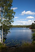 Lakeside view in Dalarna-2.jpg