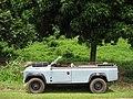 Landy Tree transporter - panoramio.jpg
