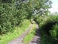 Lane, Buckode - geograph.org.uk - 1430682.jpg