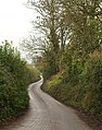 Lane near Hedging - geograph.org.uk - 1586327.jpg
