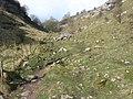 Lathkill Dale - geograph.org.uk - 1216285.jpg