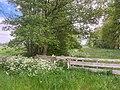 Legaat De Klencke Oosterhesselen Klenckerveld Natuurgebied Landgoed Natuurmonument Nieuwe Natuur 14 33 33 049000.jpeg