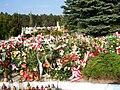 Leszek Deptuła-grave in Mielec.jpg