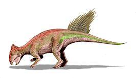 Liaoceratops yanzigouensis