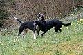Lilo a Wesley an der Péitruss-114.jpg