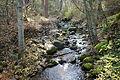 Lithia Park - Ashland, Oregon - DSC02752.JPG