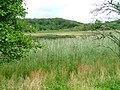 Loch nan Eala - geograph.org.uk - 36917.jpg