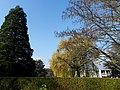 Loex, Promenade le long du Rhone - panoramio (4).jpg