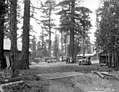 Logging camp and cars, George Scott Lumber Company, Susanville, ca 1922 (KINSEY 2325).jpeg