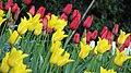 London - April 2009 (3496793425).jpg