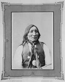 Photo of a Kiowa Indian (Lone Wolk the elder)