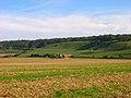 Longfurlong Barn - geograph.org.uk - 246501.jpg