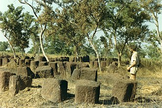 History of Senegal - Megalithic alignments in Senegal