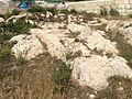 Mġarr cart ruts 22.jpg