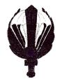 MIL ITA ass 12 btg sabotatori paracadutisti (b).png