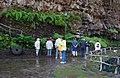 Madeira Vincente cave C.jpg