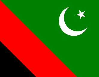Majlis Wahdat-e-Muslimeen - Image: Majlis Wahdat e Muslimeen Pakistan Flag