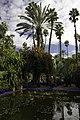 Majorelle Gardens (11080616386).jpg
