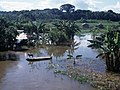 Many branches begin flooding in November by James Martins Pereira - panoramio.jpg