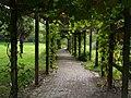 Margam Park - geograph.org.uk - 574815.jpg