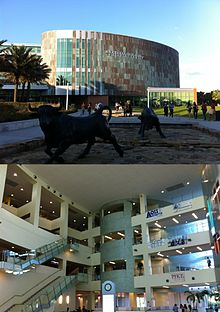University of South Florida - Wikipedia