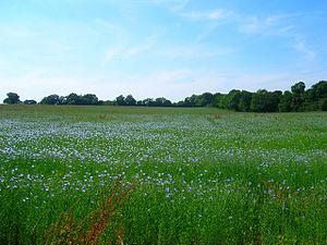 Meadow near Gard's Farm Taken from the bridlew...