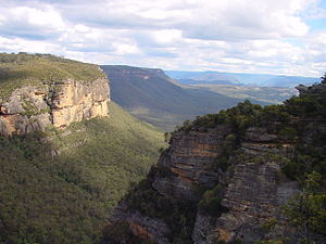 Megalong Valley - View of Megalong Valley from near Nellies Glen on the Six Foot Track. The cliffs on the left are part of Peckmans Plateau (on the SW outskirts of Katoomba); those on the right, part of Radiata Plateau.