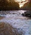Mehoopany Creek Topaz.jpg