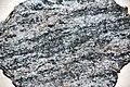 Migmatite (Archean, ~ 3.524 Ga; Minnesota, USA) 1 (49156025601).jpg