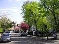 Milborne Grove, Chelsea - geograph.org.uk - 1828634.jpg