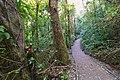 Monteverde Reserve Costa Rica 02.jpg