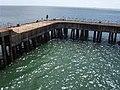 Mooring pier at end of Sandown Pier - geograph.org.uk - 51073.jpg