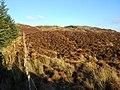 Moorland west of An Creachan - geograph.org.uk - 1096180.jpg