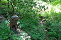 Morris Arboretum - DSC00430.JPG
