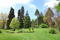 Morris Arboretum - DSC00525.JPG