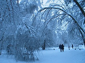 Glaze (ice) - Wikipedia