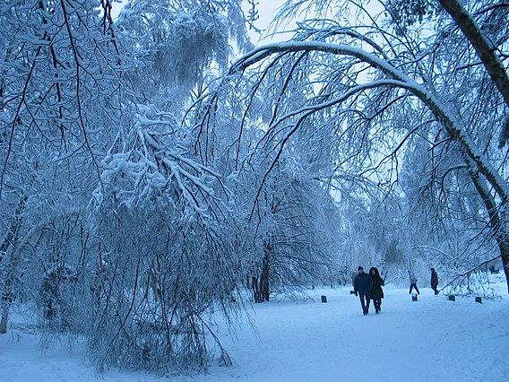 Glaze Ice Wikiwand