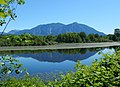 Mount Si seen from Mill Pond Road in Washington state.jpg