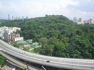 Mount Faber - View of Mount Faber from Prima Tower Revolving Restaurant