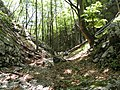 Mudna dol - panoramio (12).jpg