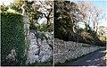 Muro que rodea o bosque de Fefiñáns (Cambados).jpg