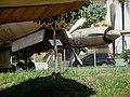 Museu Eduardo André Matarazzo - Bebedouro - Corujas Buraqueiras (Athene cunicularia) embaixo das aves raras do museu - panoramio.jpg