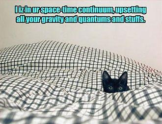 Tailored Access Operations - Image: NSA quantum cat