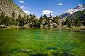 Naltar Lake 002.jpg