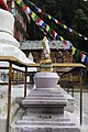 Namo Buddha 2017 08.jpg