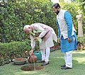 Narendra Modi planting a Kadamb sapling (Neolamarckia Cadamba), at the Race Course Road lawns, to mark the occasion of the World Environment Day, in New Delhi. The Minister of State for Environment (1).jpg