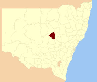 Narromine Shire Local government area in New South Wales, Australia